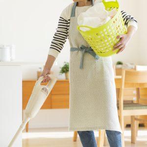 家事スタイルに関する調査2016