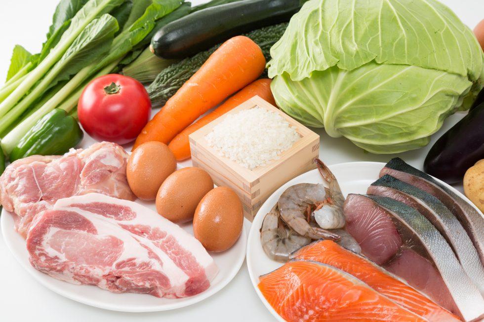 肉や野菜など13種類の食材の写真